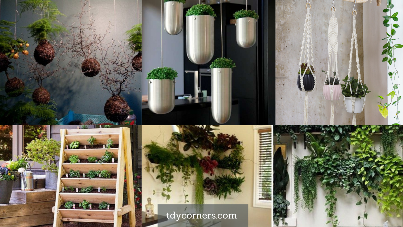 TDy Corners 5 Unique Ideas Of Making Vertical Garden For Your House
