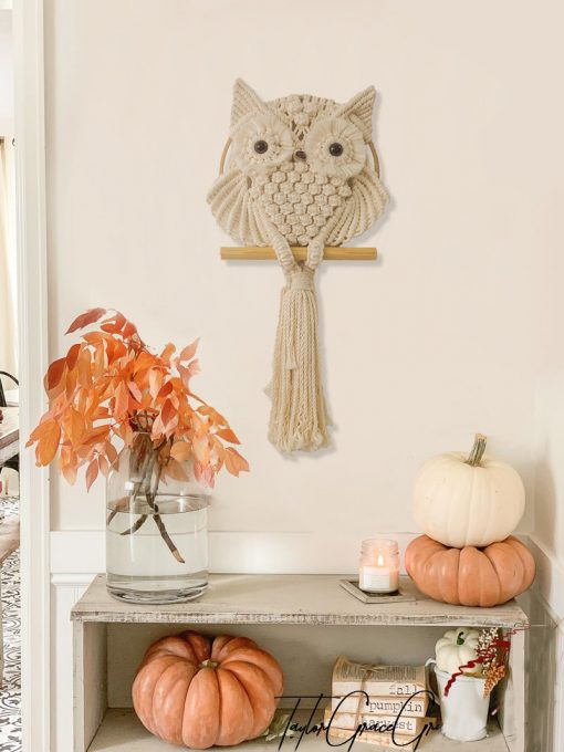 TDy Corners Fall Decor with Farmhouse Style by Macrame Owl Hanging
