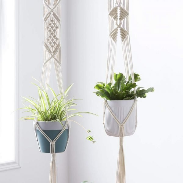 TDy-Corners-choose-plant-for-macrame-plant-hanger