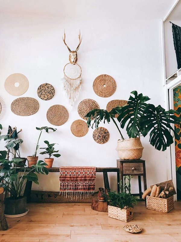 TDy-Corners-decorating-with-monstera-plant