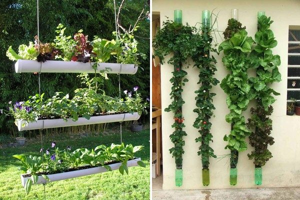TDy-Corners-vertical-garden-by-making-rows