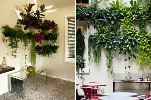 TDy-Corners-vertical-garden-by-using-shelves